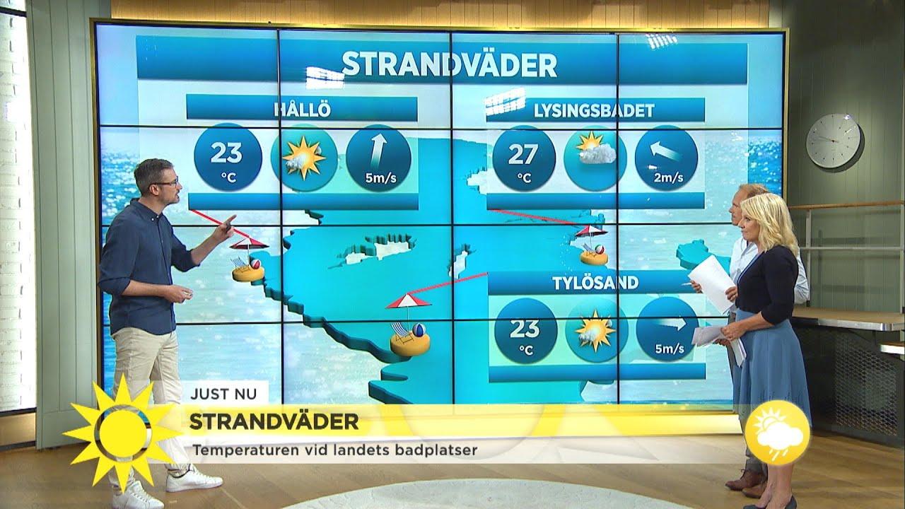 Så blir dagens strandväder - Nyhetsmorgon (TV4)