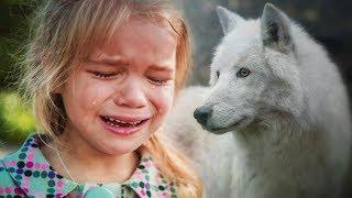 История про девочку и волчицу. Трогательно до слёз.