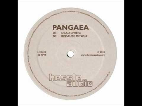Pangaea - Because of You