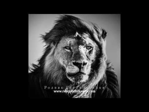 черно белое фото лев
