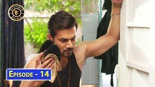 Visaal Episode 14 - Top Pakistani Drama