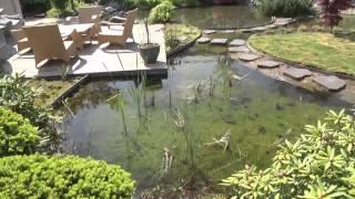Le Jardin et Bassin de jardin Japonais de Van Keulen  (Van Keulen garden)