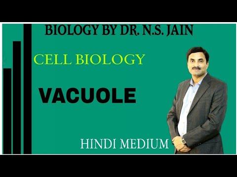 Vacuole (Cell Biology) Class 11th Hindi Medium