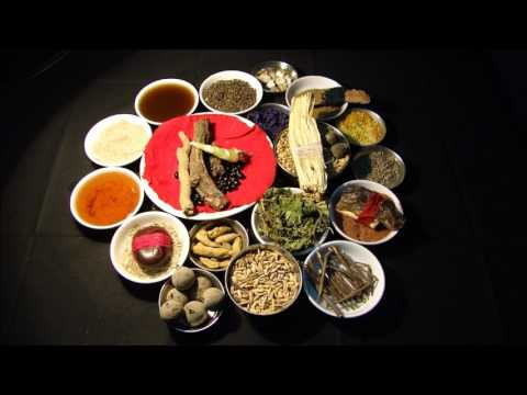 Stage 4 Cancers: Traditional Herbal Drugs. Research by Pankaj Oudhia