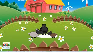 Baa Baa Black Sheep - Popular Nursevy Rhymes Collection by Kids Show