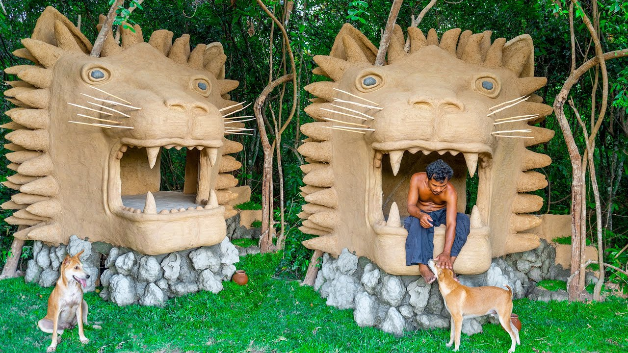 Build Unbelievable Lion House Stay With Rescued Abandoned Dog