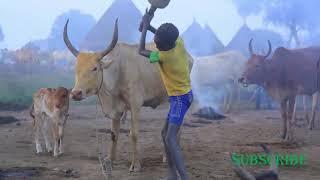 ethiopian music video #Weyene Alemeye #ፍፁም ገ/ፃዲቅ||የተቀነባበሩ ሙዚቃዎች
