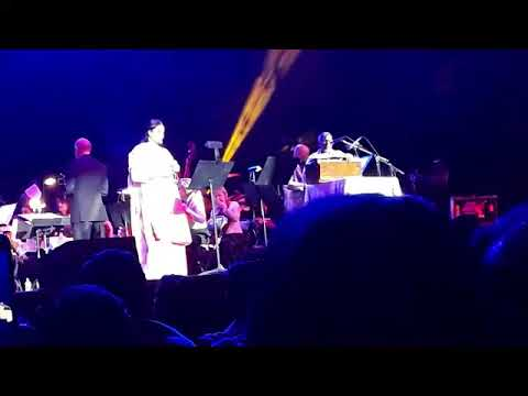 Ilayaraja Concert Poo Malaye In Fairfax Virginia USA March 31st 2018  Ilayaraja Sri Varthini