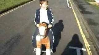 Walking Ride On Rocking Horse From Jusonne Uk