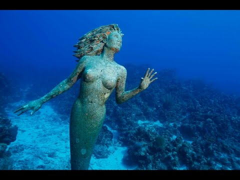 Cayman Islands Diving 2014