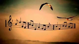 Nàng - Bằng Kiều - Lyrics