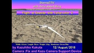 Sterna27iV:Flight at Seaside  with Tyikyi color 2 thumbnail