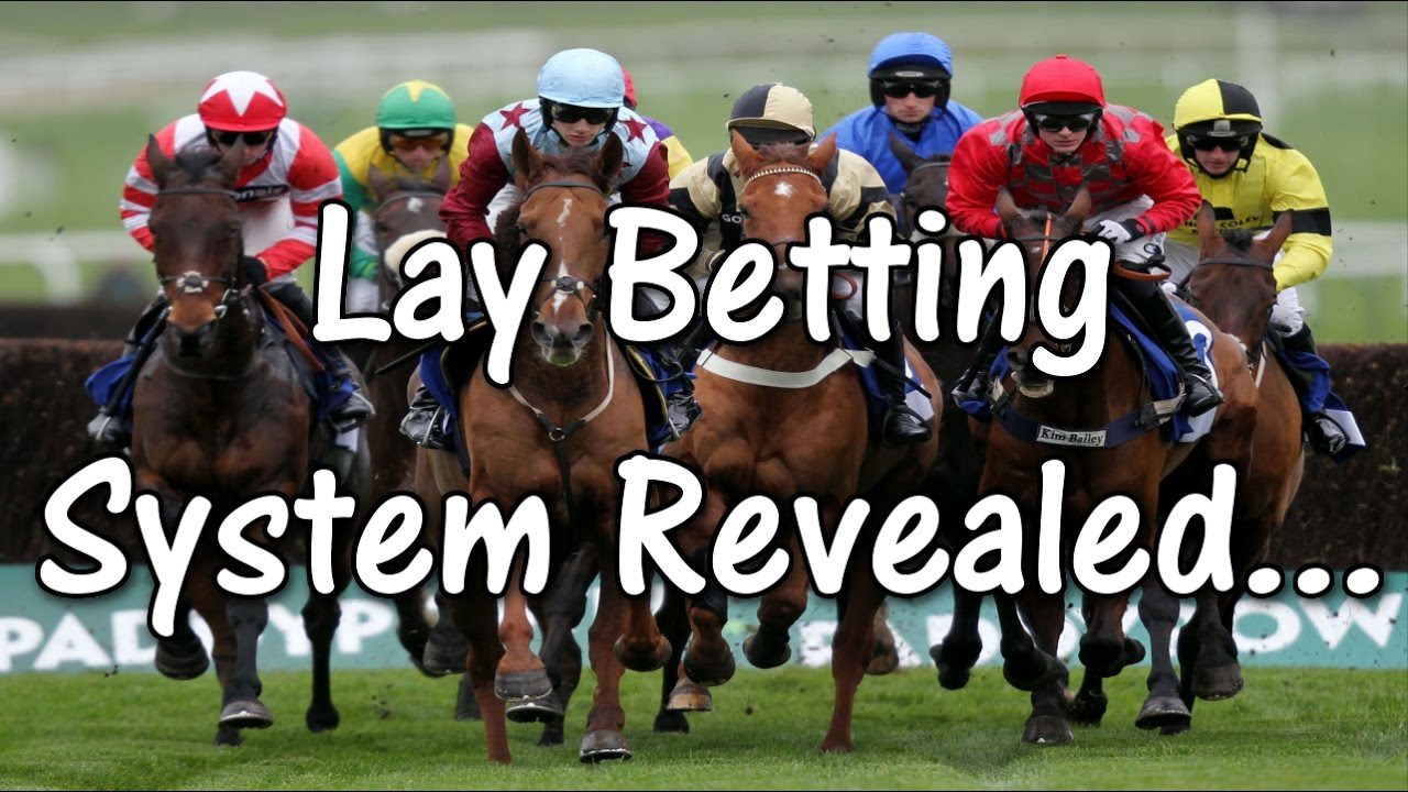 Lay horse betting horse betting online free
