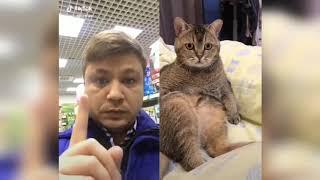 #11 Смешные приколы с животные новинки 2019 ржака ...