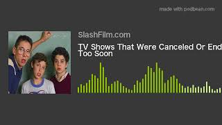 TV Shows That Were Canceled Or Ended Too Soon