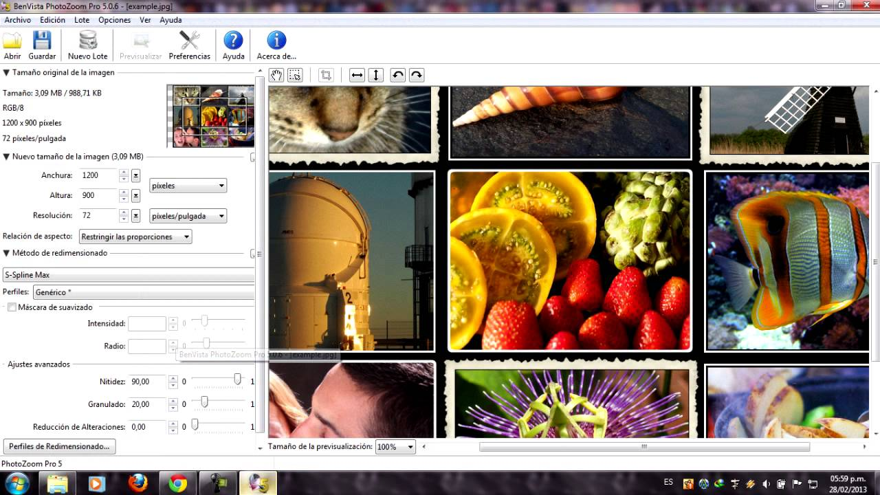 benvista photozoom pro 7.1 full