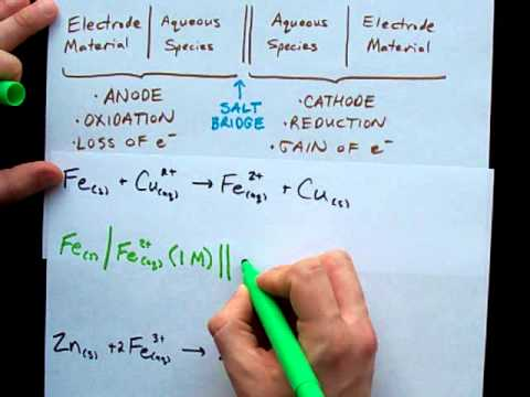 Cell Notation + 3 Examples