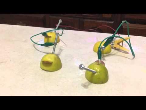 Circuito con limones