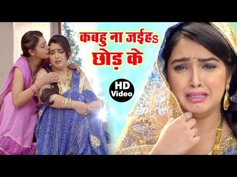 Aamrapali Dubey का सबसे दर्द भरा गीत - Dinesh Lal Yadav 'Nirahua' Bhojpuri Sad Song 2019