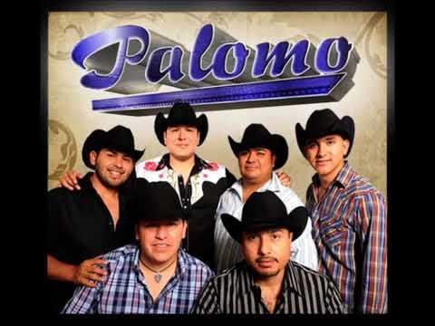 Palomo - No me conoces aun
