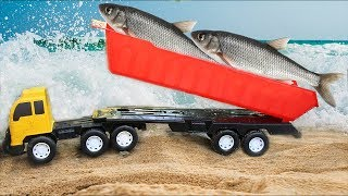 จับปลาในน้ำ รถบรรทุก รถแม็คโคร รถตักดิน Excavator Vs Real fish