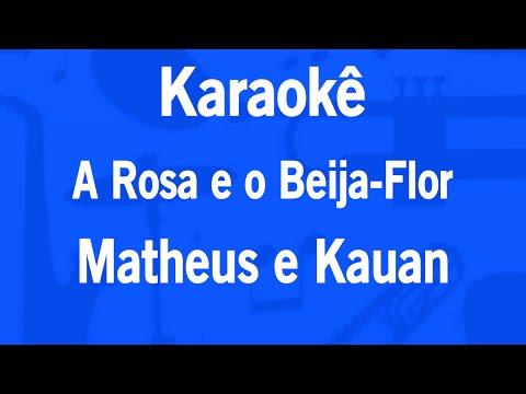 Karaokê A Rosa e o Beija-Flor - Matheus e Kauan