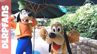 Goofy is a fan Meet and Greet Goofy and Pluto at Disneyland Paris