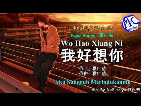 Wo Hao Xiang Ni (aku sungguh merindukanmu)