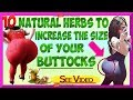 how to increase buttocks quickly without surgery 10 natural herbs to increase the size of your butto