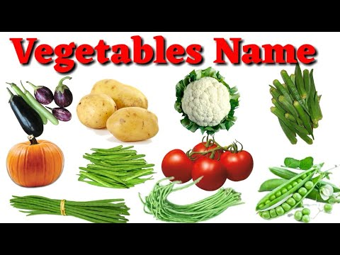 Vegetables Name Hindi & English Language / सब्जियों के नाम हिन्दी एवं अंग्रेजी भाषा में