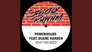 What You Need (feat. Duane Harden) (Richard F. Vox Dub)