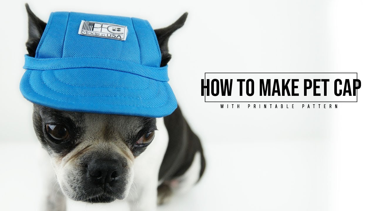 227218723e1 How to Make a Pet Hat - YouTube