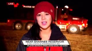 Tiffany Liou's MMJ/Reporter Reel