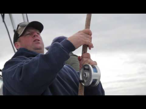 Hunting For Harrisons!  Fall Fishing With Bon Chovy