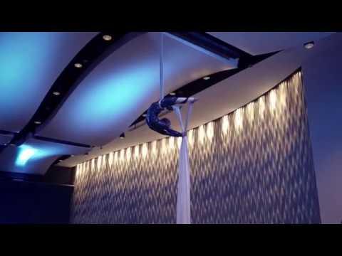 Atlanta Aerial Silks - Event Entertainment