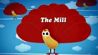 First Baby Song - The Milld - BabyTv- Kids Educational - ChuChuTv- Charlie