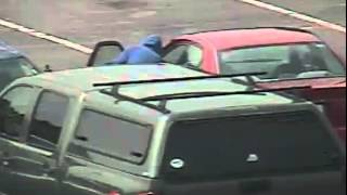Kingsport Town Center Auto Burglary 8/21/2014