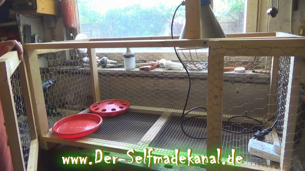 Aufzuchtbox für Hühner selber bauen Artikelbild