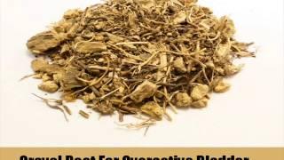 Herbal Reme Overactive Bladder