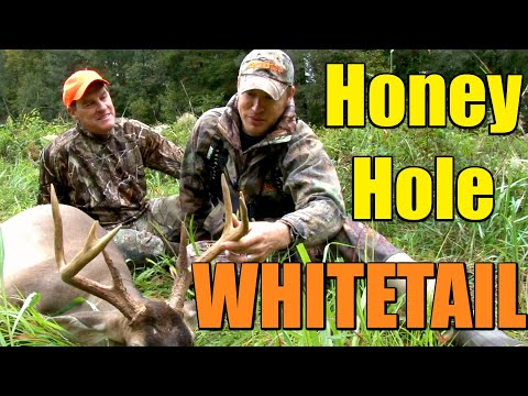 Gorgeous South Carolina Whitetail Deer Hunt!