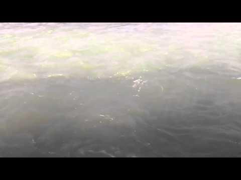 Relaxing Nature Video| Peaceful Flowing River| Beautiful Ganges (Ganga)