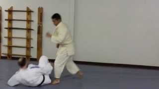 Judo - Adults Training At Martial Art Fitness Center In Rochester Mn