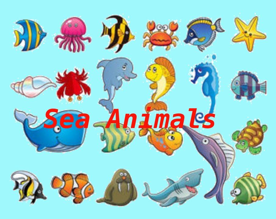 Sea Animals and Ice Li...