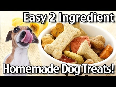 2 Ingredient Homemade Dog Treats - Natural DIY Dog Treats Recipes