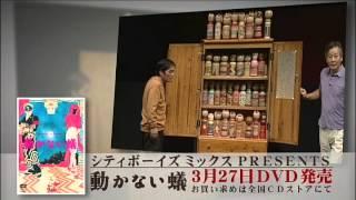 2013.3.27発売 DVD「シティボーイズミックスPRESENTS 動かない蟻」 4700...