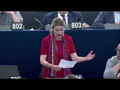 MEP Stihler passionately speaks out against Article 13