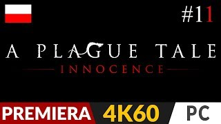 A Plague Tale: Innocence PL  #11 (odc.11)  XI - Żyjemy | Gameplay po polsku