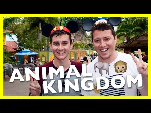 A Guide to Animal Kingdom at Walt Disney World | Tenani