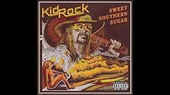 Kid Rock - Raining Whiskey (Audio)