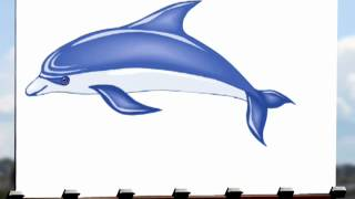 Draw A Digital Dolphin For Mobile Games Or For Fun Booklife.co.za
